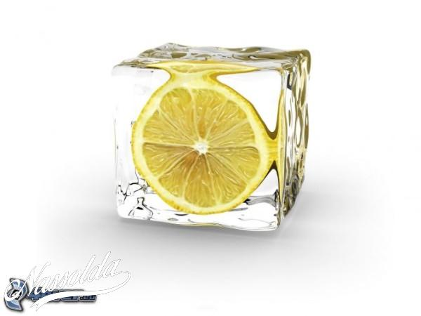 citrom,-jegkocka-166441